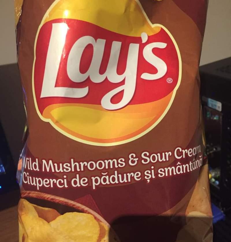 Wild mushrooms and sour cream flavor