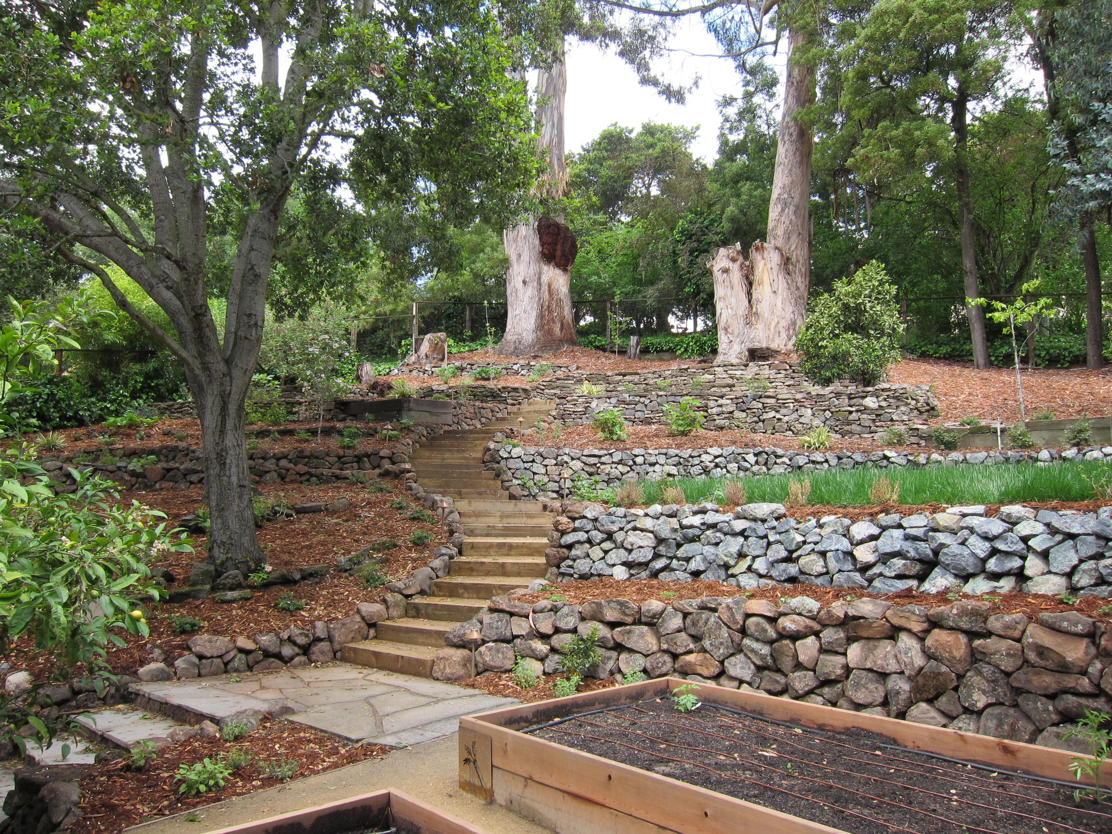 Oakland Sloped Garden | lazar landscape on Garden Ideas For Sloping Gardens id=42497