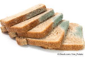 ¿Comiste pan con moho? Aquí que hacer