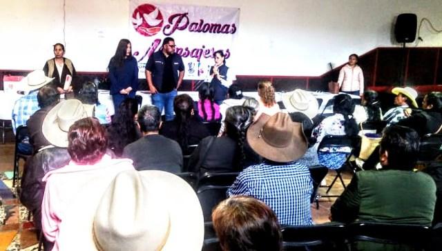 Volarán 93 Palomas Mensajeras, de Penjamillo y Erongarícuaro, a Estados Unidos