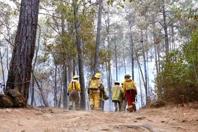 Controlado incendio en la montaña del Parque Nacional de Uruapan