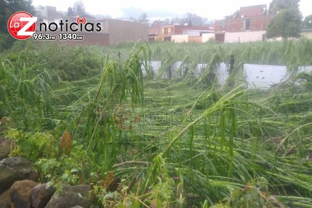 Tromba causa daños a cultivos y desborda río en Chilchota