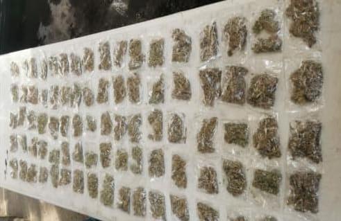 Asegura SSP a uno en posesión de 841 gramos de hierba verde al parecer marihuana
