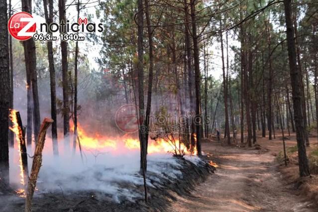 Arde cerro de La Joyita en Agostitlán, gente pide atención inmediata