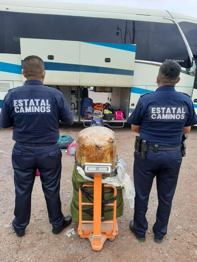 En Zitácuaro, asegura SSP más de 29 kilos de marihuana