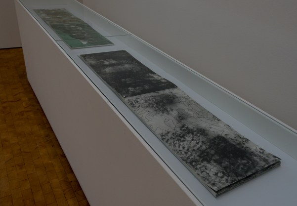 """Adam Lowe, Littoral Deposits, 1994 