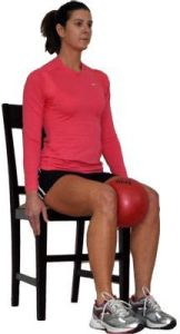Exercise Ball - Inner Thigh Squeeze
