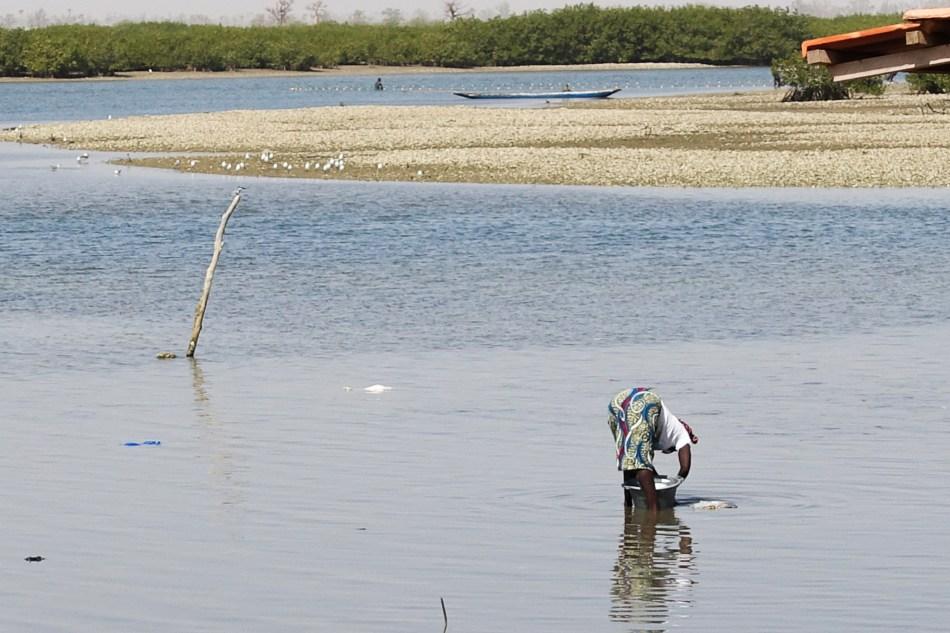 Senegal wyspa z muszli
