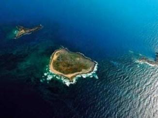 Rare Palm Islands Nature Reserve