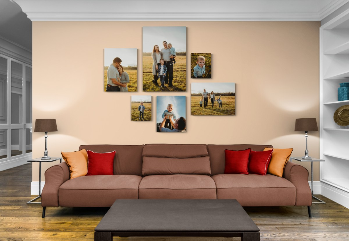 family photographer in tampa florida