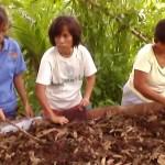 KASAMA nagsanay sa vermiculture