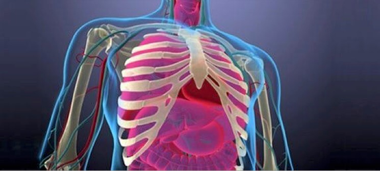 UCLA opens new trial for stage IV NSCLC patients