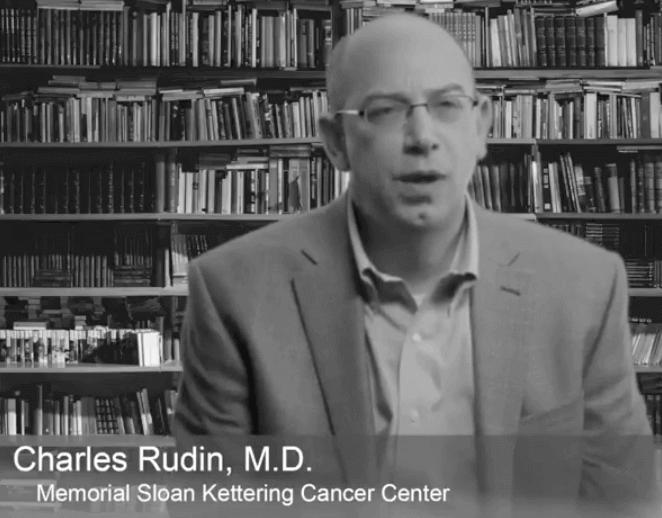 Dr. Charles Rudin, Lung Cancer Investigator