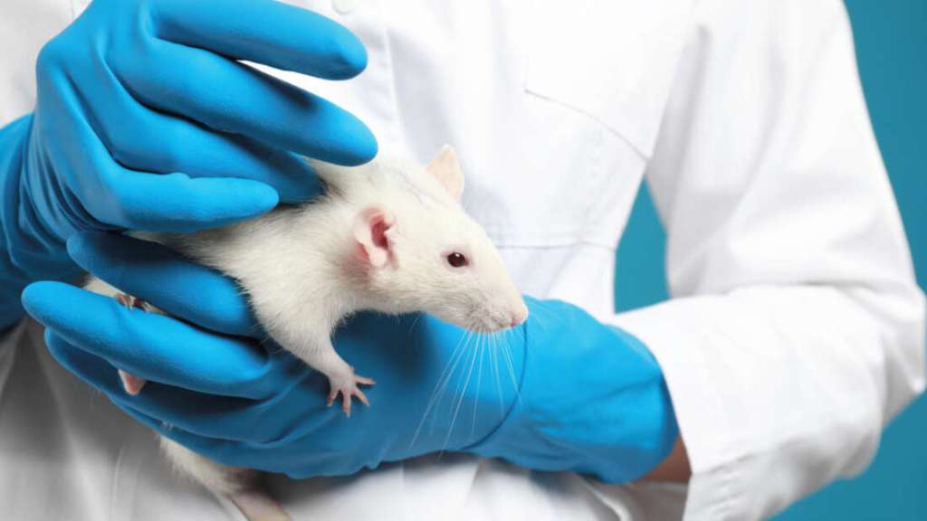 No Animal Testing Drug Submitted For FDA Approval