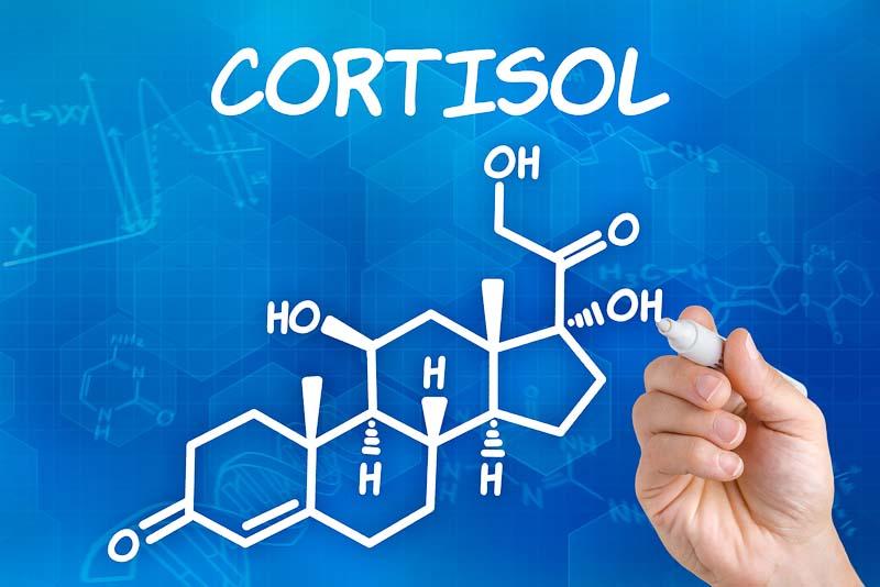 cortizolul formula chimica