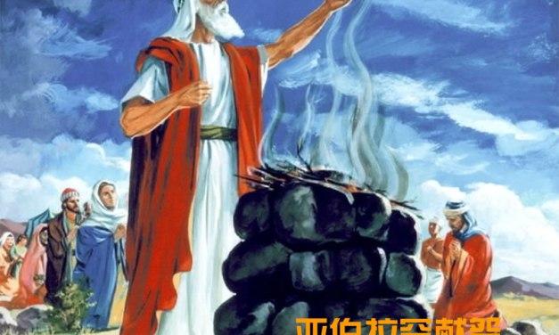聖經利未記獻祭種類