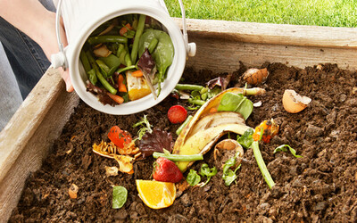 खाद (Compost)