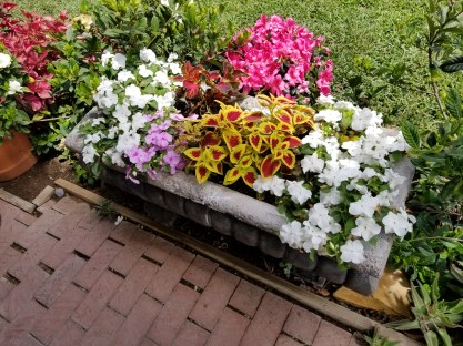 Gorgeous flower box