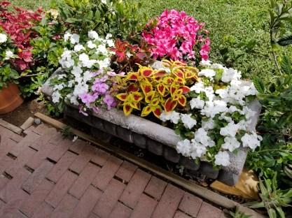 Gorgeous flower box
