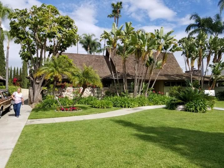 Tiki House and Palms