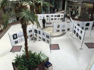 SRGB Exhibition 2016