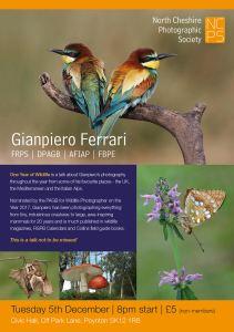 Gianpiero Ferrari poster NCPS
