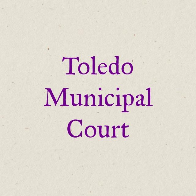 Partner Organizations – Lucas County Trauma-Informed Care