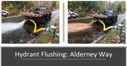 Flushing 14