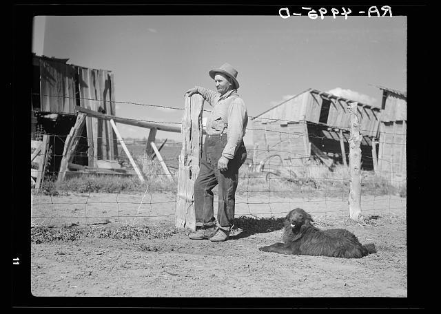 Central Oregon sheep herder