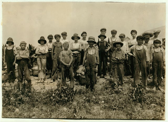 Group of field-workers at Hunttings' Tobacco Farm. One of 9 years, two of 11 yrs., 8 of 12 yrs., 5 of 13 yrs., 3 of 14 yrs., 1 of 15. Four of 11 and 12 had gone home and were not counted. Most of these get $1.50 a day.  Location: Rockwell, Connecticut