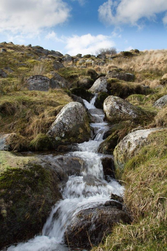 Dartmoor-0235