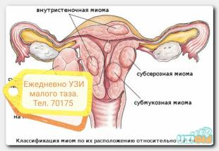 УЗИ_щитовидной_железы