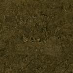 Auburn Moss Granite