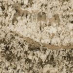 Dalmatine White Granite