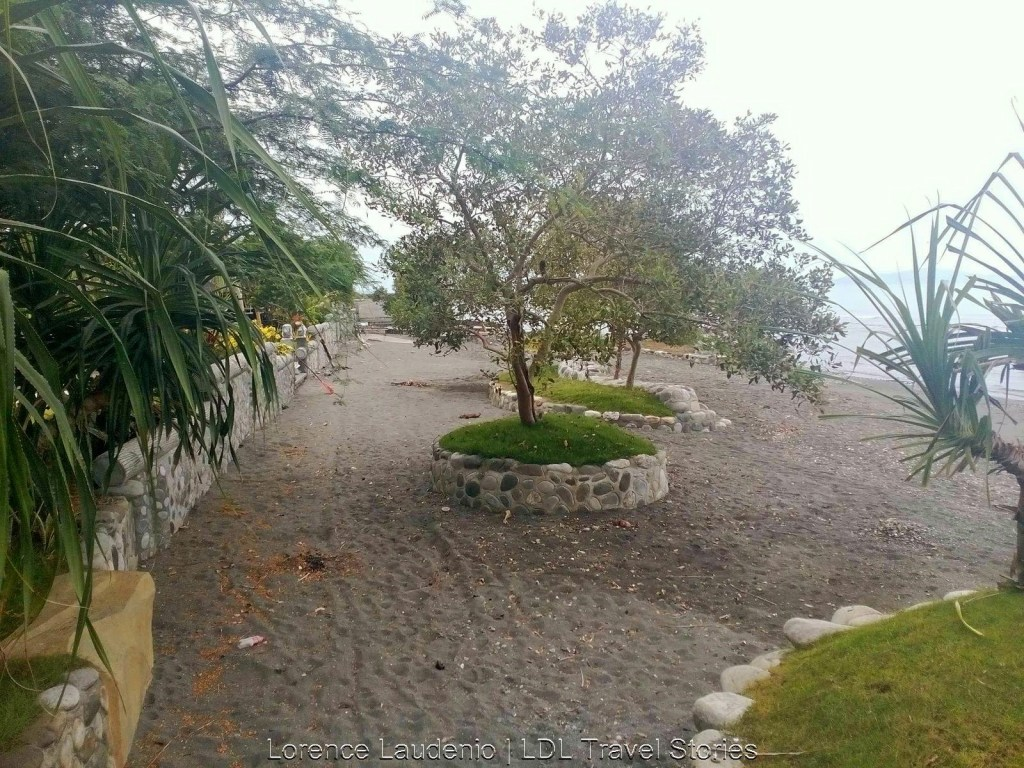 Landscapes of plants on the beach of Anilao Eco Village.