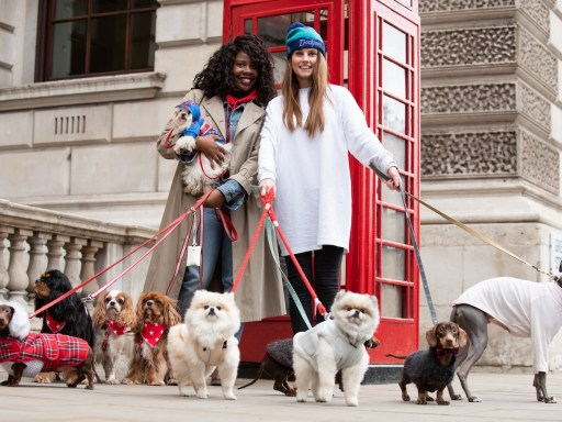 London Dog Week: Making London more dog friendly