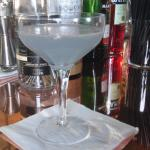 Shake Rattle and Stir's Gin Experience - Review 23