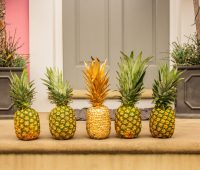The Duppy Share Rum drops 1,000 pineapples to Londoners to Celebrate National Pineapple Day 32