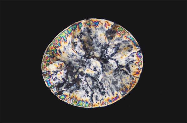# 顯微鏡下的毒品原來這麼美:荷蘭攝影師 Maurice Mikkers 的 毒品結晶 系列作品 4