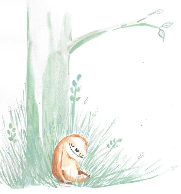 # 暑假近尾聲:跟著樹懶一起懶懶的生活吧! 4