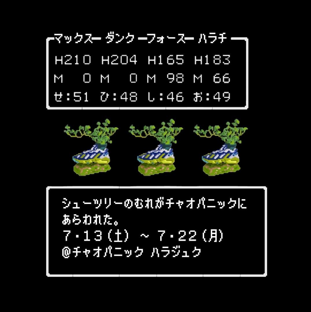 # Kosuke Sugimoto的鞋履植栽:賦予球鞋新生命 4