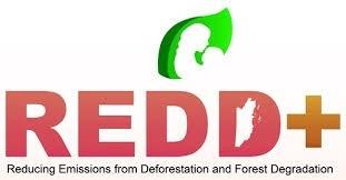 # Moncler:環保羽絨原來不是只有羽絨回收? 5