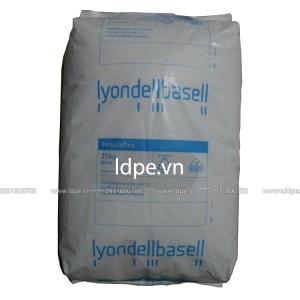 Hạt nhựa PP HP500N ả rập