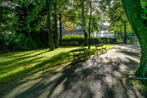 victoria_park_shadows_ldpfotoblog_web