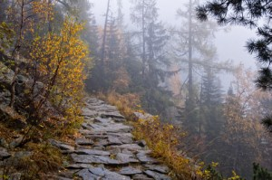 Picture of a rough mountain path with a sheer drop off and dense fog.