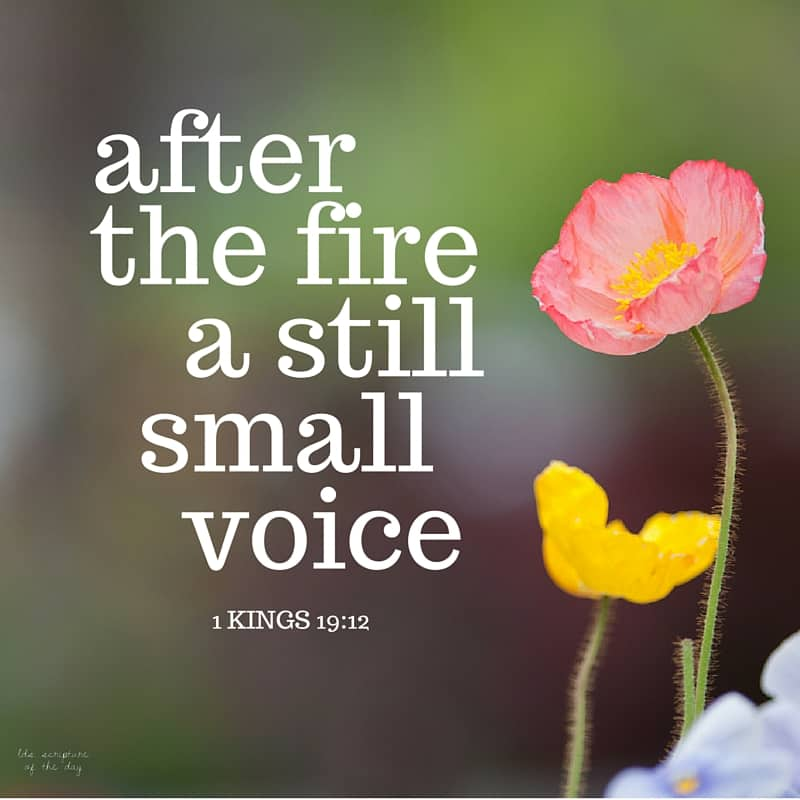 And after the earthquake a fire; but the Lord was not in the fire: and after the fire a still small voice. 1 Kings 19:12
