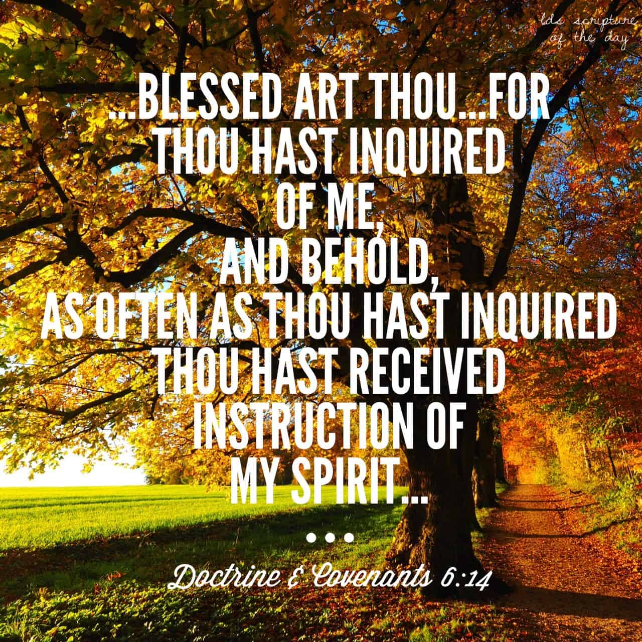 Verily, verily, I say unto thee, blessed art thou for what thou hast done; for thou hast inquired of me, and behold, as often as thou hast inquired thou hast received instruction of my Spirit.... Doctrine & Covenants 6:14