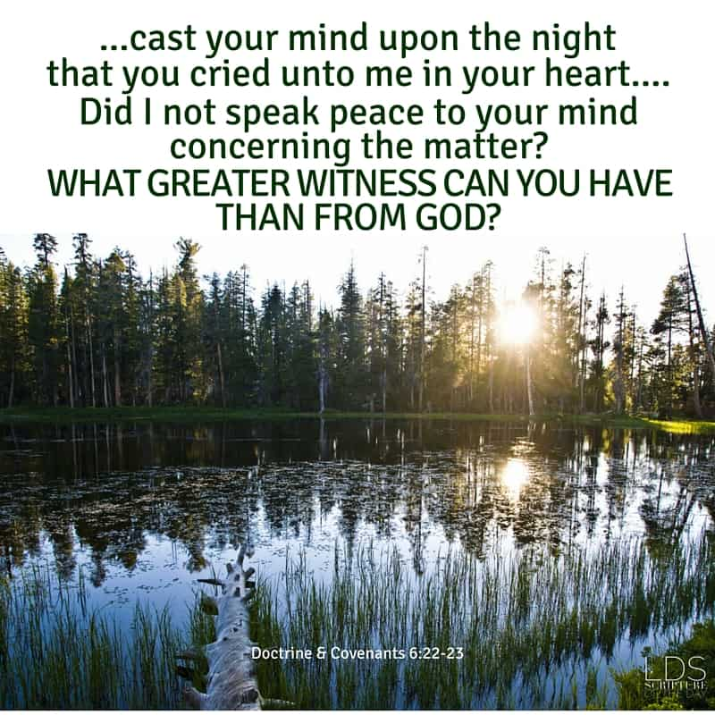 Verily, verily, I say unto you, if you desire a further witness, cast your mind upon the night that you cried unto me in your heart, that you might know concerning the truth of these things. Did I not speak peace to your mind concerning the matter? What greater witness can you have than from God? Doctrine & Covenants 6:22-23