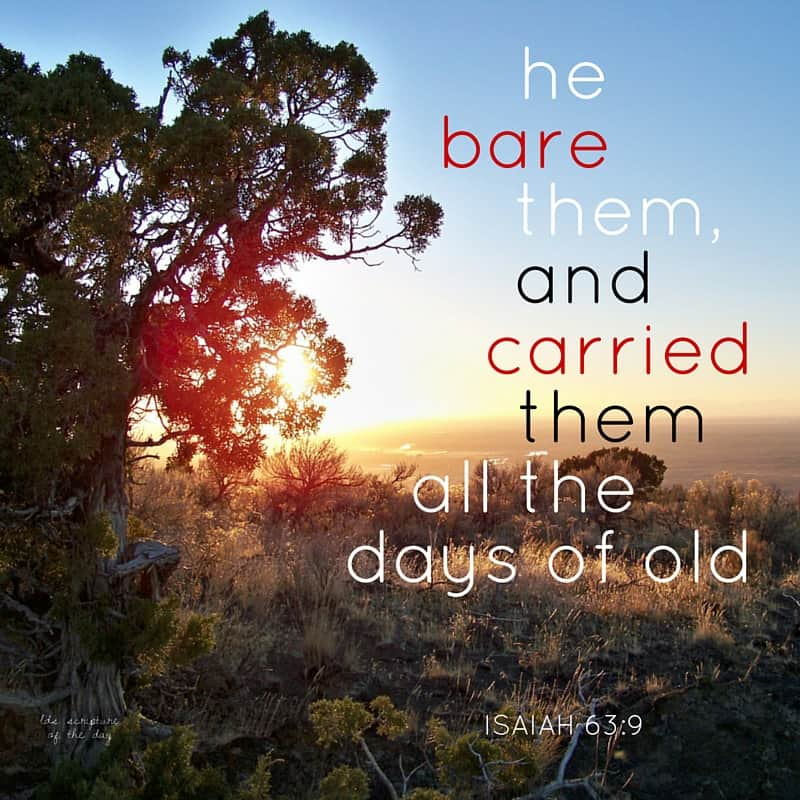...he bare them, and carried them all the days of old. Isaiah 63:9