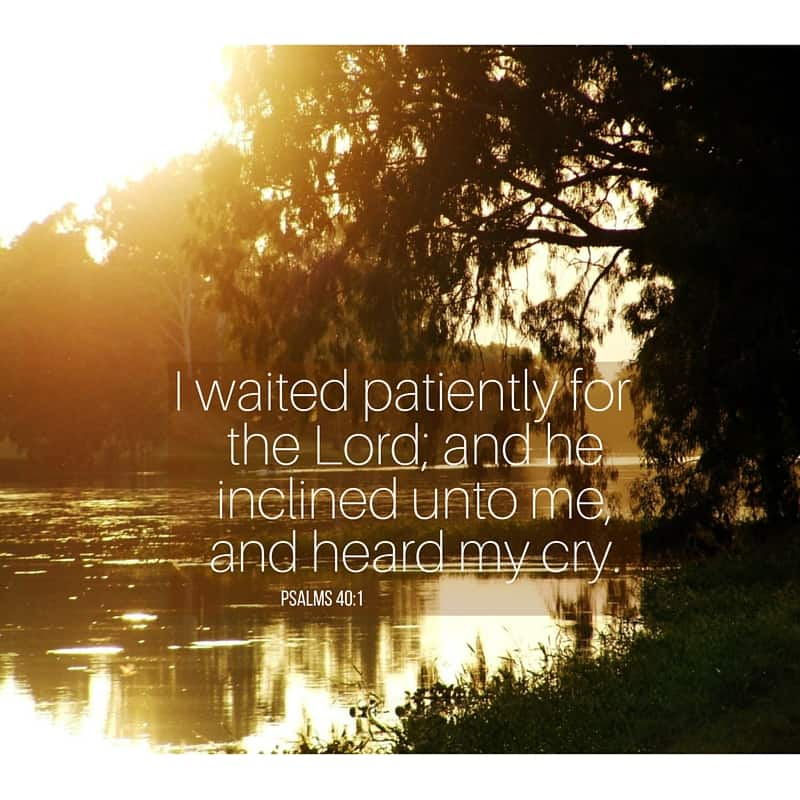I waited patiently for the Lord; and he inclined unto me, and heard my cry. Psalms 40:1